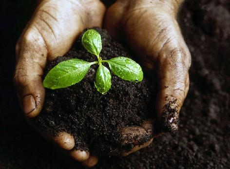 宁夏:完成土壤环境质量监测风险341个点位布设