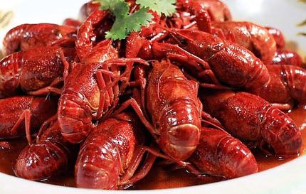 澳大利亚龙虾供过于求一夜之间价格大跌
