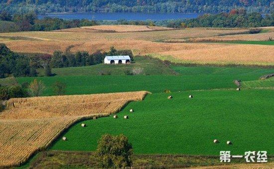 农村土地与国有土地同等同价入市入草案