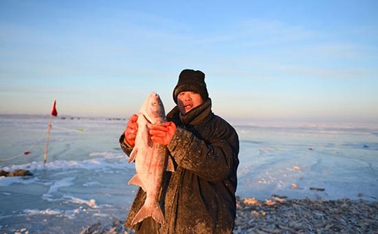 内蒙古呼伦湖冬捕开始 优质鱼比例已提升到13%