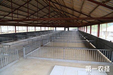 养猪场建设三大注意事项