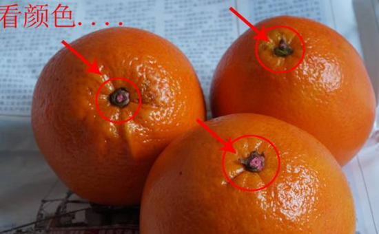 """太原农贸市场查获1000余箱""""染色沙糖橘"""""""