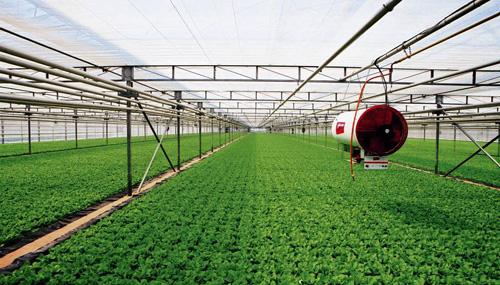 湖南:现代农业特色产业园省级示范园已建成300个