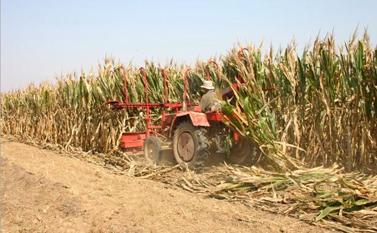 2017年关于玉米秸秆处理农业补贴新增三项