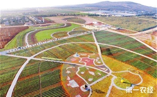 中国首个热带农业科技园