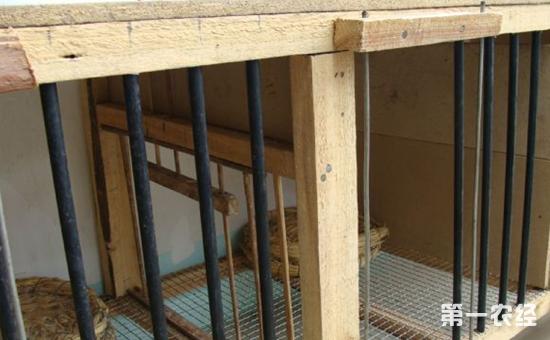 鸽子笼设计图