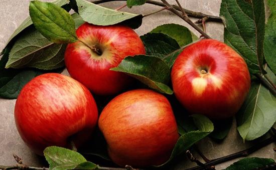 甘肃:推进苹果产业转型升级创新发展
