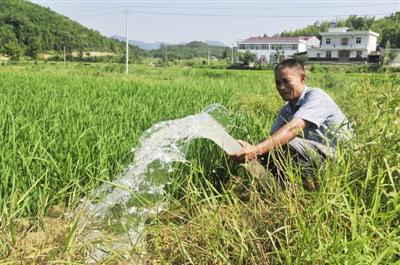 <b>宁夏:农业节水灌溉面积去年累计达265万亩</b>