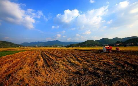 <b>2017年农村农民必知的最新土地政策有哪些?</b>