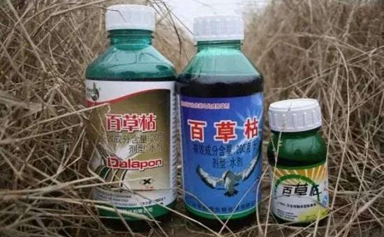 陕西:实现农药减量控害和农业提质增效进行了研讨
