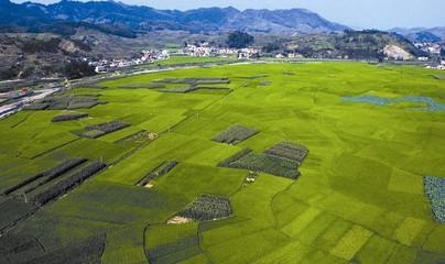 北京:首个农村土地承包经营权抵押融资项目正式落地
