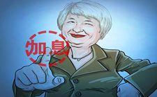 高盛公司最新报告:经济看好美联储加息看多