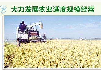 河南:构建现代农业市场体系势在必行