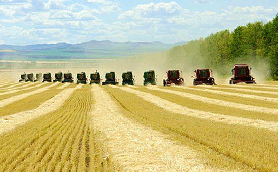 海南:农垦深入推进改革 2016年实现收入161.66亿元