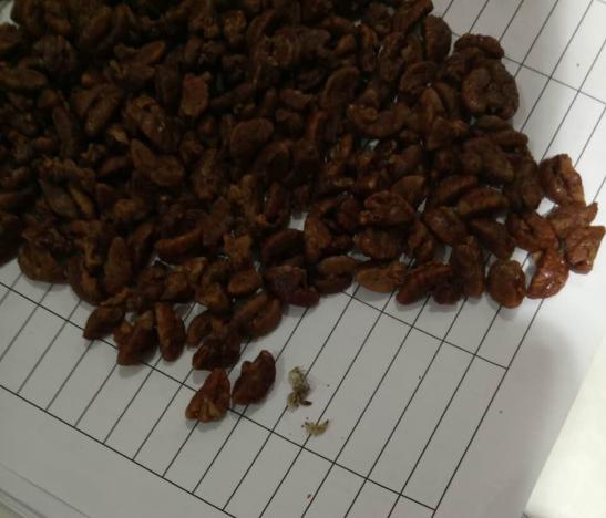 <b>青岛:奥润特超市购买的辰记山核桃中惊现虫子</b>