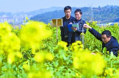 湖南:以精细农业引领农业供给侧结构性改革