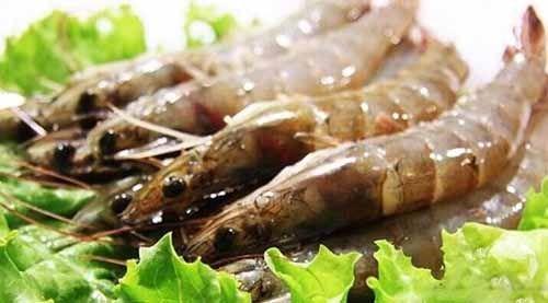 澳大利亚放松对进口虾的管制措施 涉及生虾及其产品
