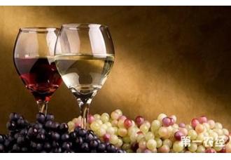 葡萄酒怎么酿制?  葡萄酒酿制技巧