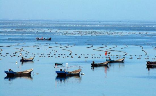 辽宁:加快渔业调整结构 养殖品种不断优化