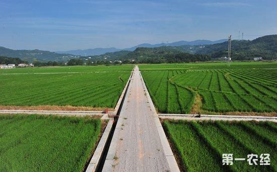 高标准农田建设