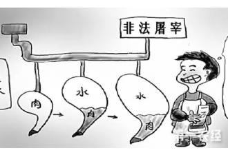 农业部四项措施推进屠宰行业规范管理