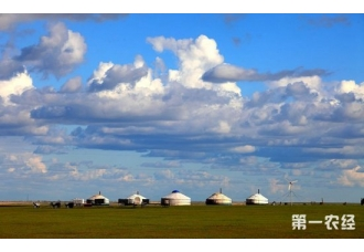 """内蒙古发声促农牧循环发展 """"南猪北养""""或成定局"""