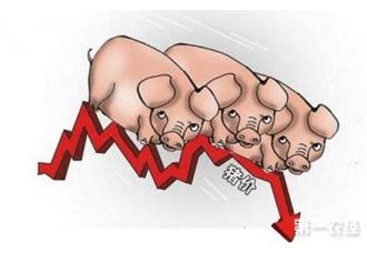 生猪价格整体行情趋稳 供需两端博弈激烈