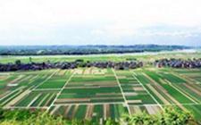 重庆潼南:狠抓农业供给侧结构性改革 建设新型农业经营