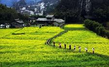 贵州:深化改革 确保脱贫攻坚再战告捷