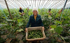 江西南昌:积极发展智慧农业 推进农业产业升级