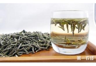 白茶有哪些品种?白茶品种介绍