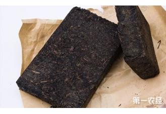 安化黑茶是传销吗 安化黑茶的冲泡方法