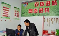 海南海口:至2018年将完成11个贫困村电子商务服务站建设工作