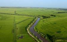 黑龙江庆安:五个突破种出优质绿色有机农产品