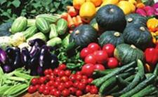 遵义绿色优质农产品盛宴即将在京展销
