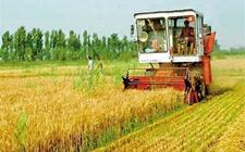多项改革措施并行 赋予农民更多权利