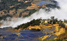 云南:2020年力争全省农业增加值达3000亿元