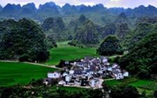 贵州:建设绿色优质农产品大省 打造中国优质农产品供给基地