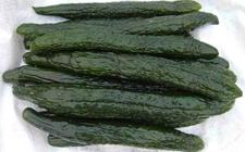江苏连云港:17.5吨盐渍蔬菜首次进入香港市场
