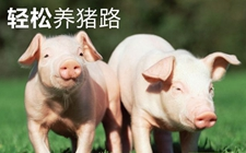 <b>受用一生的34条养猪经验</b>