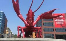 中国首届国际龙虾·虾稻产业博览会将在潜江举办
