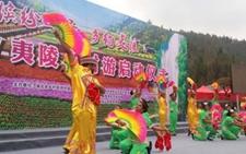 湖北上洋:发展新型乡村旅游生态村 成为农村经济新引擎