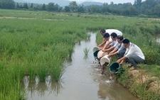 <b>农业部发布2017年稻渔综合种养技术示范工作安排</b>