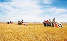 农业规模经营补贴谁能领?需要哪些手续呢?