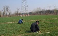 天津:市农委安排部署2017年农业十项重点工作任务