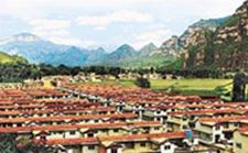 河北邯郸:优化农业种植结构 推广生产绿色农产品