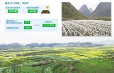 广西河池:搬出石山创收益