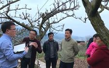 重庆万塘:打造高端休闲农业 发展乡村旅游新业态