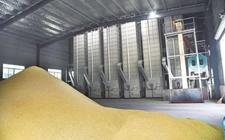 四川成都:三年建成60个粮食烘干中心规划落实完成