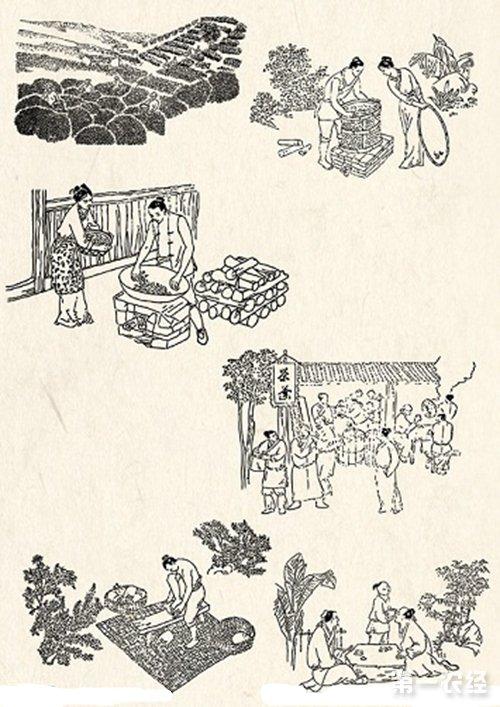 制茶方法:古代的几种制茶工艺